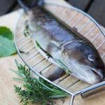 Frische Kräuter geben dem Fisch beim Grillen ein gutes Aroma.