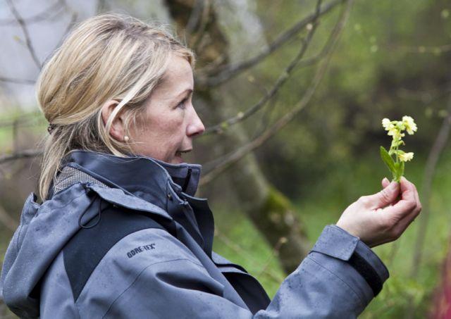Johanna Staudinger erklärt die Erkennungsmerkmale diverser Kräuter - Blog ConnyPURE