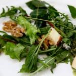Wildkräutersalat verfeinert mit Walnüssen, Äpfeln und Pesto.