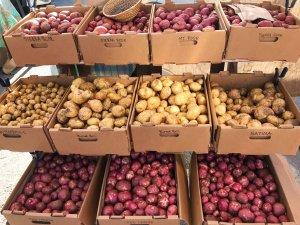 Kartoffeln aus Amerika - ConnyPURE