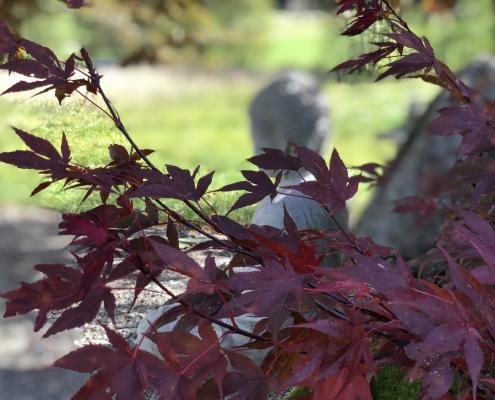 Zen Garten zum Entspannen
